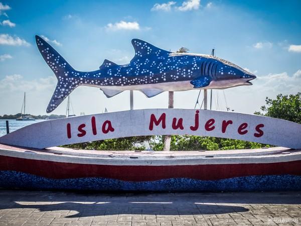 O tubarão-baleia é o símbolo de Isla Mujeres