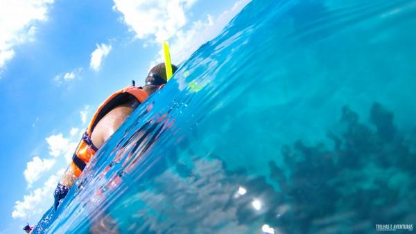 Mergulho no MUSA em Isla Mujeres