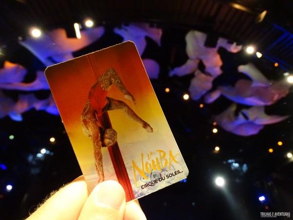 Cirque du Soleil La Nouba, no Downtown Disney - Orlando