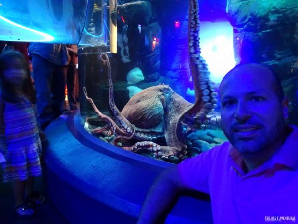 Ripleys Aquarium de Toronto-5