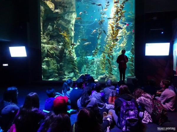 Ripleys Aquarium de Toronto-6