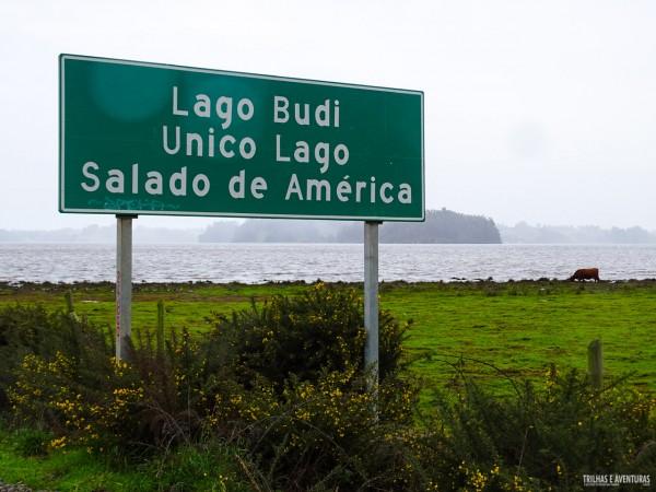 O Lago Budi é o único lago salgado das Américas