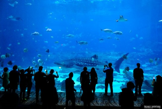 Georgia Aquarium em Atlanta