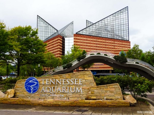 Tennessee Aquarium em Chattanooga