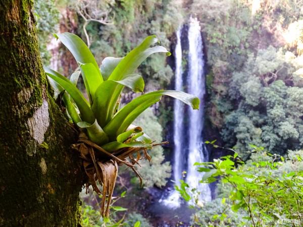 Uma das muitas cachoeiras do EcoParque Sperry, em Canela