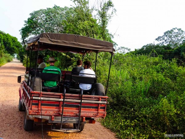 Safari pela Estrada Parque Pantanal