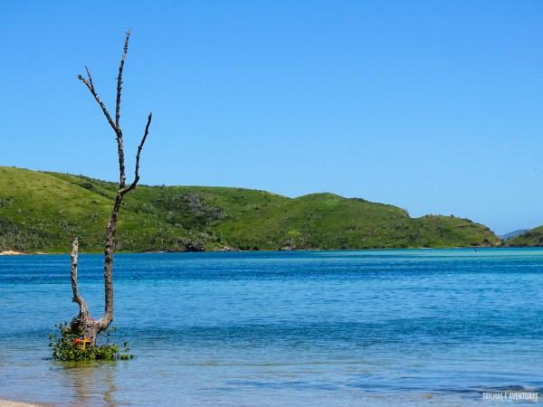 Que tal esse paraíso? É a Ilha do Japonês, em Cabo Frio