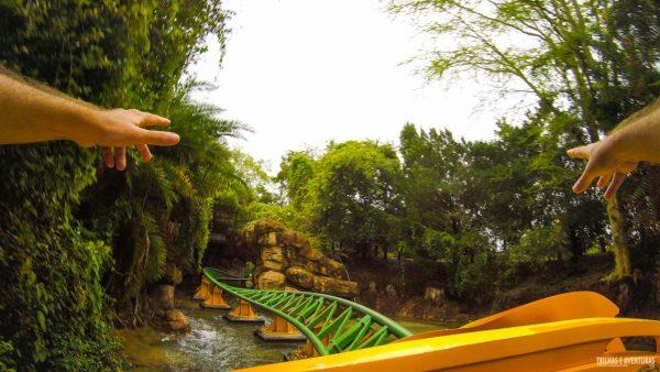 Busch Gardens Tampa-14