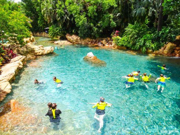 Discovery Cove Orlando-21