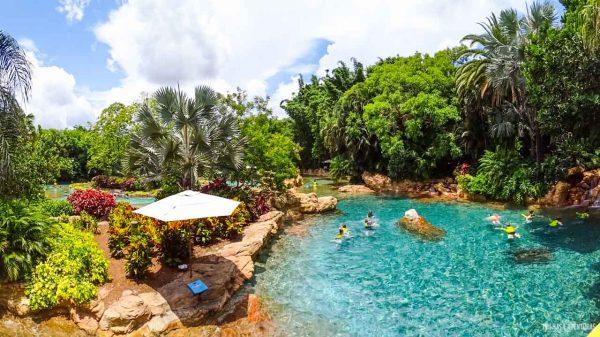 Discovery Cove Orlando-22