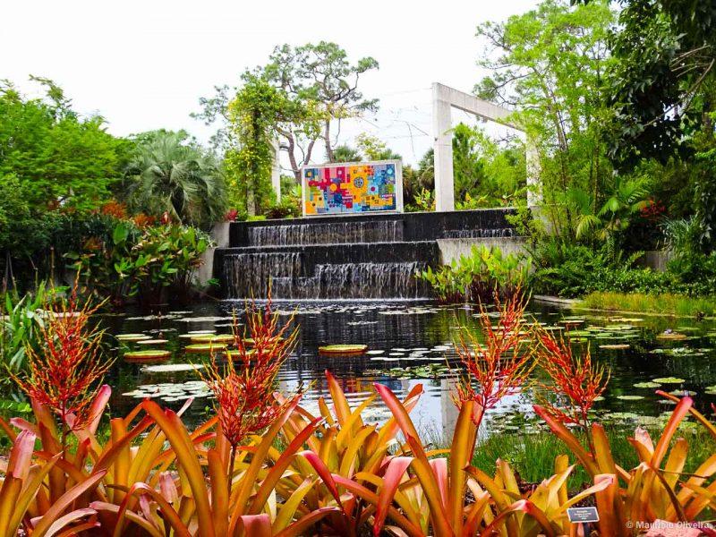 O Naples Botanical Garden é uma das pérolas de Paradise Coast