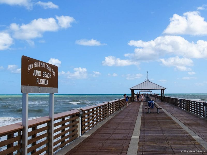Juno Pier em The Palm Beaches