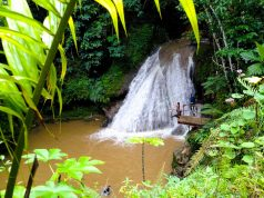 Essa é uma das cachoeiras mais lindas da Jamaica: a Island Gully Falls