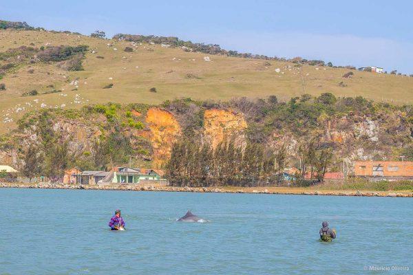 Pesca artesanal com ajuda dos golfinhos em Laguna - SC