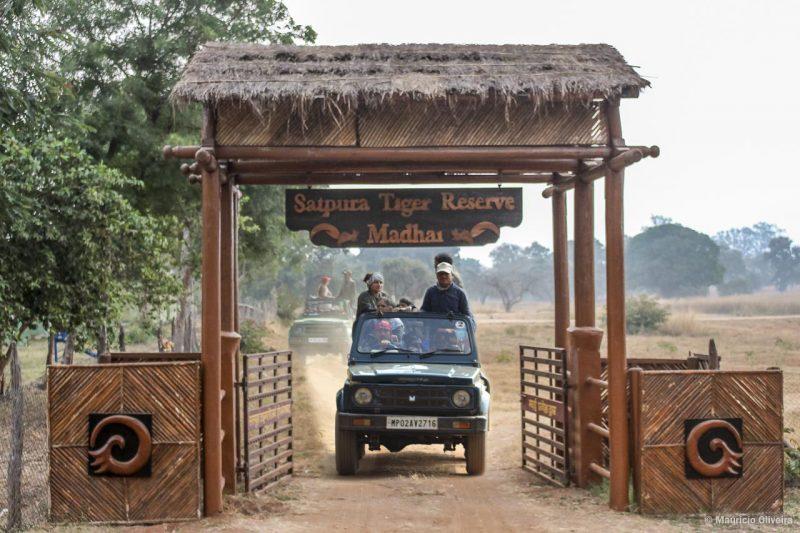 Parque Nacional de Satpura - Experiências selvagens e safári na Índia
